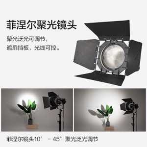 Image 2 - Nanguang NANLITE FL 20G 20G פרנל עדשה עם barndoor נקודה למבול מתכוונן עבור NANLITE 200W 300W 200 300 צילום אור