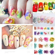 Professional Dried Flowers Nail Art Set Fashion Salon Multiple Combinations Fruit Feather Slices For Nails HIAISB