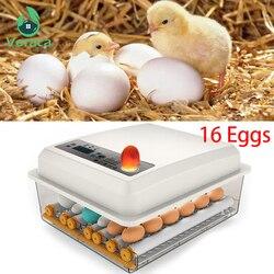 220V Eggs Incubator Brooder Bird Quail Incubator Chick Hatchery Incubator Poultry Hatcher Turner Automatic Farm Incubation Tools