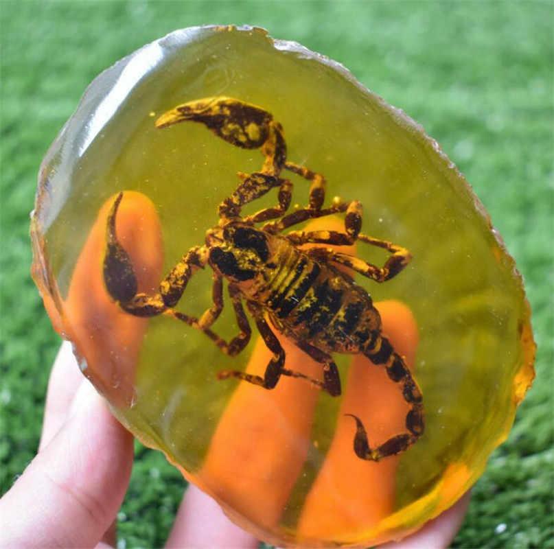 Patung Tembaga Cina Koleksi Langka Amber Dalam Inlay Hewan Scorpion Benar Serangga Spesimen 150G