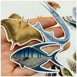 24 unidades/pacote vintage oceano mar animais peixe adesivo diy artesanato scrapbooking álbum lixo diário planejador adesivos decorativos