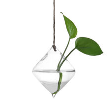 Hanging Glass Ball Vase Flower Plant Pot Terrarium Container Party Wedding Decor transparent glass hanging hydroponic vase(China)