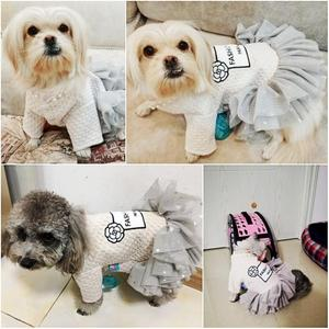 Image 4 - New Princess Small Dog Dresses Coat Autumn Cat Skirt Clothes Tutu Dress For Dogs Puppy Teddy chihuahua XS S M L XL