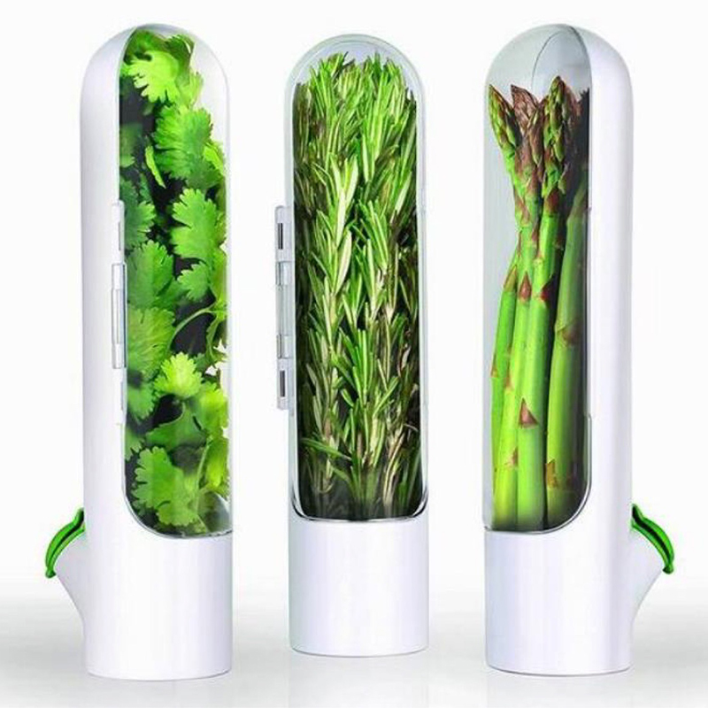Lasting Refrigerator Herb Keeper