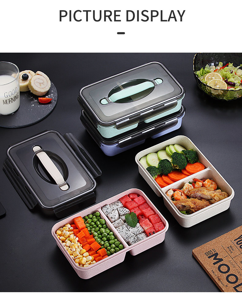 Cyan 5 Compartments with Fork Bento Lunch Box For Adults and Kids Microwave and Dishwasher Safe BPA Free Container Spoon INCLUDED