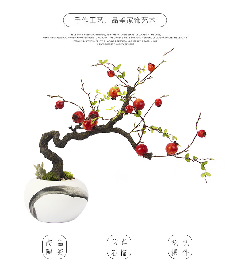 de estar decoração ornamentos planta