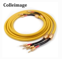 Colleimage Hifi Accuphase 1th Audio speaker Cable Gold Plated Banana Plug Speaker Wire For Hi fi Systems