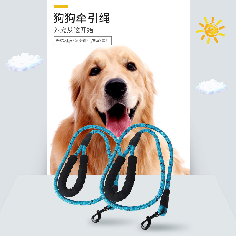 Hot Selling Nylon Pet Traction Rope Multi-color Pet Dog Hand Holding Rope Big Dog Hand Holding Rope