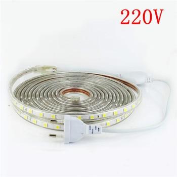Светодиодная лента 220 В 1 м 2 м 5 м 10 м 15 м 20 м SMD 5050 водонепроницаемая для наружного сада полоса теплая белая светодиодная лента с вилкой питани...