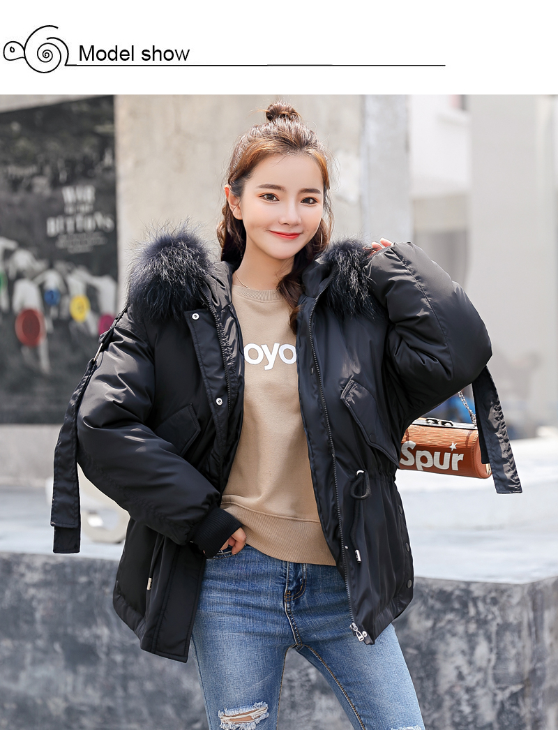 Korean Style 2019 Winter Jacket Women Cotton Padded Hooded With Fur Fe_A2_3
