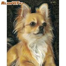 Ruopoty картина маслом по номерам собака животное наборы для