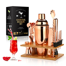 Cocktail Shaker Making Set,16pcs Bartender Kit for Mixer Wine Martini, Stainless Steel Bars Tool, Home Drink Party Accessories
