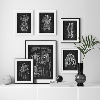 Human Anatomy Artwork Medical Clinic Wall Picture Skeleton Organ Muscle System Vintage Canvas Print Body Education Poster 5