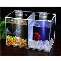 Dual compartment acrylic fish bowls mini desktop fish tank aquarium with LED imitation water plant
