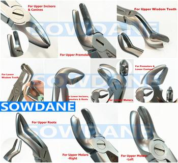 German High Quality Stainless Steel Dental Adult Tooth Extraction Plier Forcep Dental Orthodontic Surgical Tool Instrument недорого
