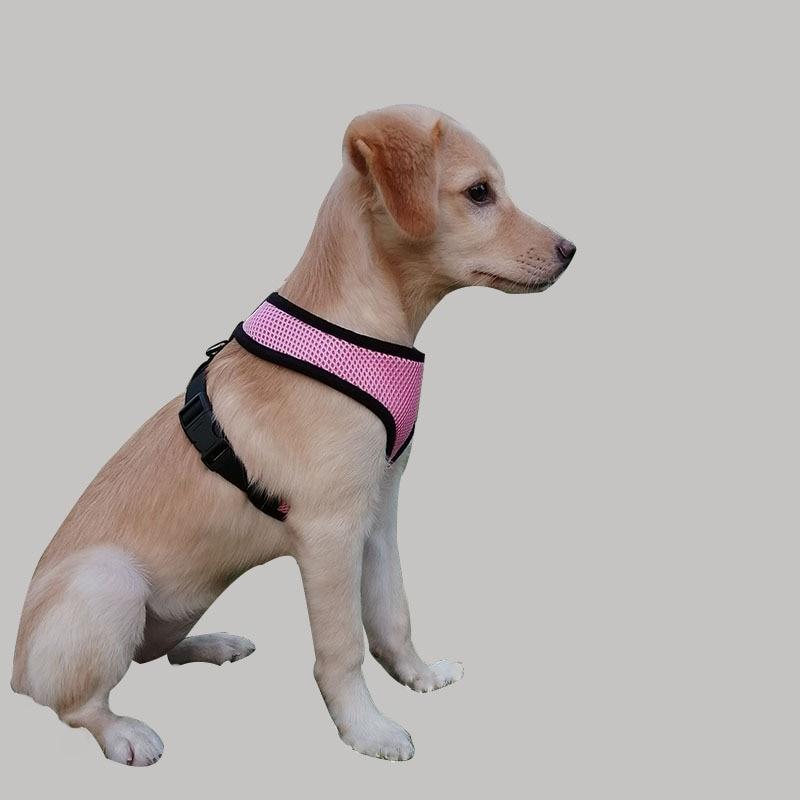 Hot Selling Comfortable Lightweight Pet Supplies Gou Bei Dai Teddy VIP Shirley Cat Small Medium-sized Dog