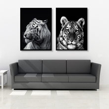 Modern Canvas Oil Painting Black and White Africa Animal Zebra Lion Giraffe Wall Pictures Poster for Living Room Home Decor(China)
