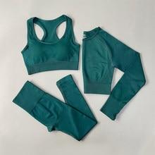 Sem costura conjunto de yoga das mulheres roupas de ginástica roupas esportivas conjunto de ginásio de fitness sutiã esportivo roupa interior leggings yoga sutiã terno esportivo