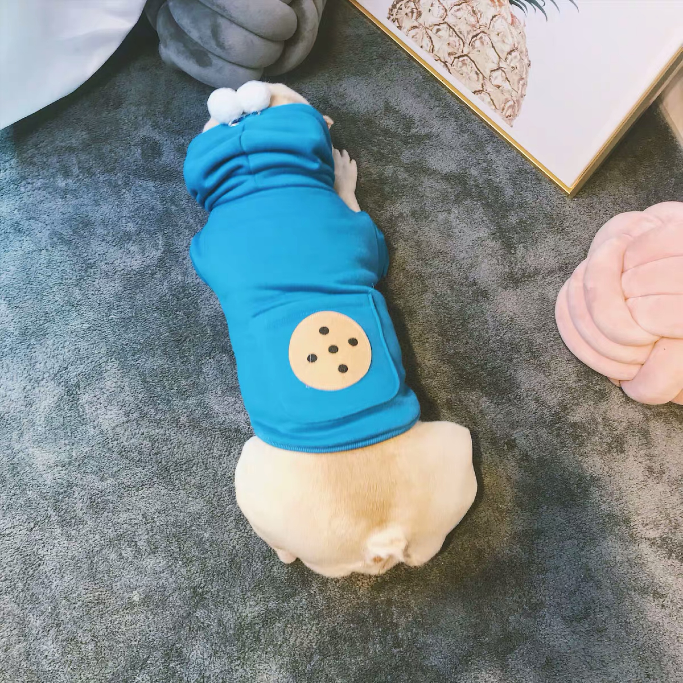 Fashion Dog Hoodie Pet Puppy Clothes Coat Bulldog Schnauzer Chihuahua Jacket for Dogs Cats Warm Apparel Pug Costume LDC04 in Dog Hoodies from Home Garden