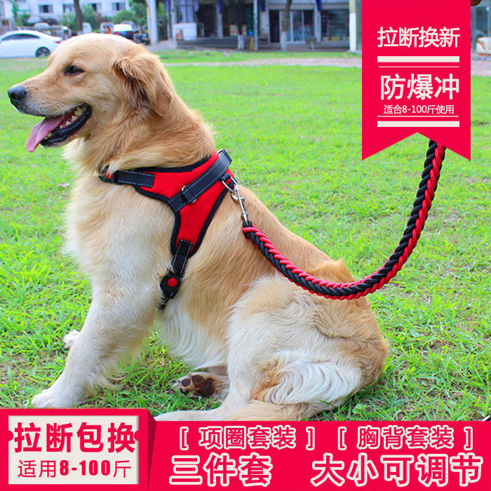 Anti-Breaking Dog Chain Dog Hand Holding Rope Large And Medium Small Dogs Dog Collar Teddy Golden Retriever Dog Rope Pet Supplie