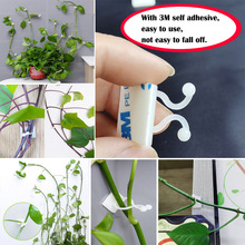 Hook Tied-Fixture Vine-Buckle-Hook Wall-Self-Adhesive-Fastener Garden-Plant-Wall Plant Climbing