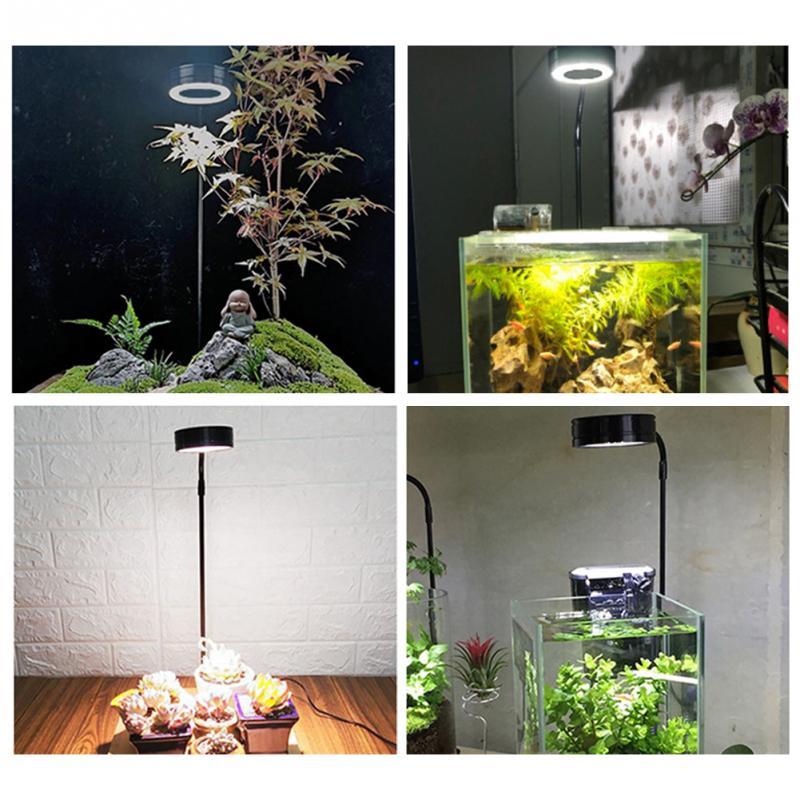 miniatura paisagem 10w anti inseto aquário led luz