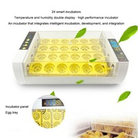 Temperature Control Digital Automatic Chicken Chick Hatcher Egg Incubator Hatcher Chicken Egg Incubator 220V 24 Egg Incubator