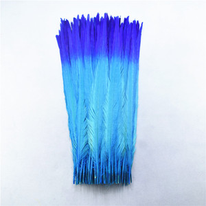 Image 5 - 100Pcs/lot 40 45CM 16 18inch Two Colors Beautiful Pattern Ringneck Pheasant Tail Feathers for Crafts Carnival Decoration Plumes