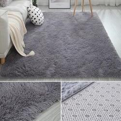 Tapis modernes pour salon chambre nordique européen sol moelleux tapis fourrure tapis grande taille peluche Shaggy doux lavable