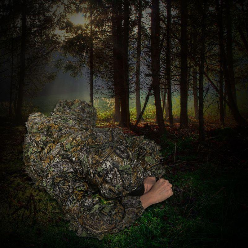 Blind & Carrinho Da Árvore