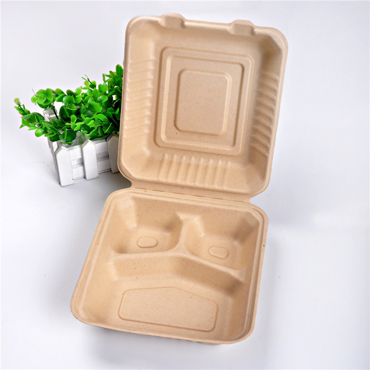 Should Jiayi B028 Disposable Environmentally Friendly Biodegradable 3 Squares Pulp Lunch Boxes Lunch Box Take-out Packing Box