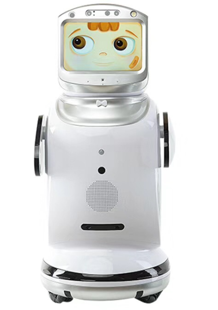 Voice-Remote-Control Robot Program Smart House Can Video-Chat-Monitoring Commercial Dialogue
