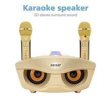 SD306 Dual Bluetooth Speaker With 2 Wireless Microphones Outdoor Family KTV Stereo Mic Big Sound 20W SDRD Sd 306 Speaker Set