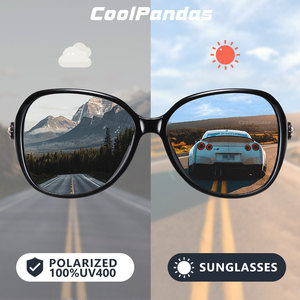 CoolPandas Brand Design Intell
