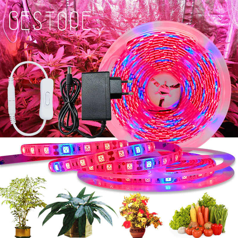20M LED Grow Light Spectrum DC12V USB Grow Light Strip LED Phyto Lamp For Plants Greenhouse Hydroponic Growing power supply Full