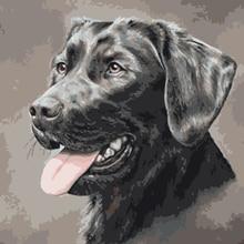 Картина по номерам «сделай сам», Прямая поставка, 40x50 50x65 см, крутая собака с черным языком, животное, холст, свадебное украшение, художествен...
