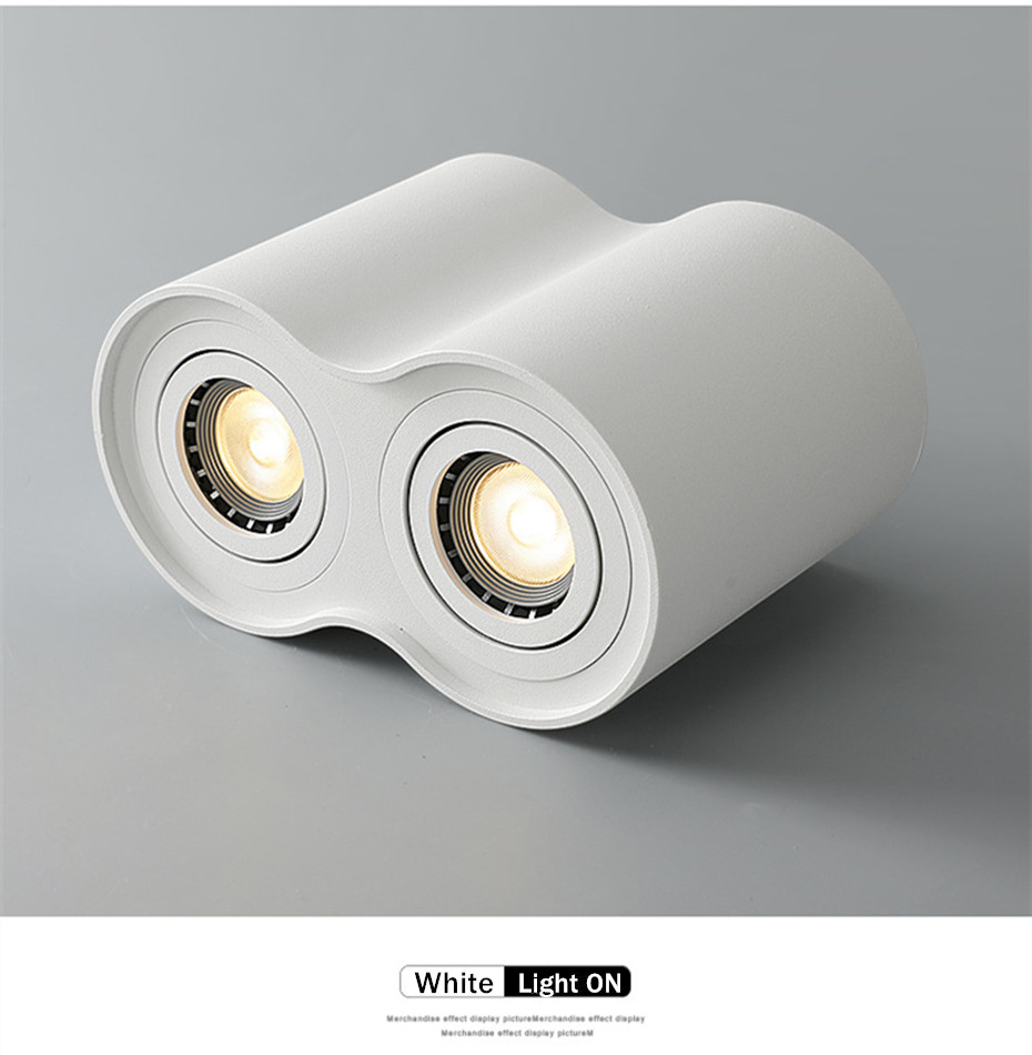 led downlights (12)