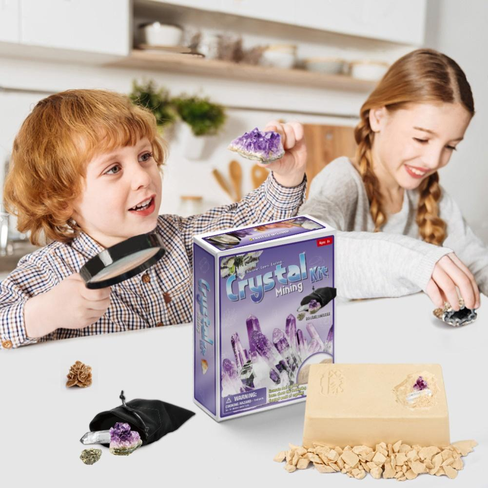 DIY Archaeological Excavation Faux Crystal Fossil Mining Kit Kids Education Toy