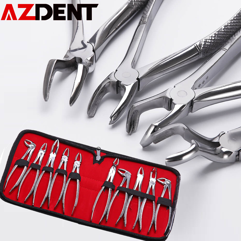 10 Pcs/set Stainless Steel Dental Extraction Forceps Pliers Kit Dental Surgical Tooth Extraction Forcep Pliers Kit