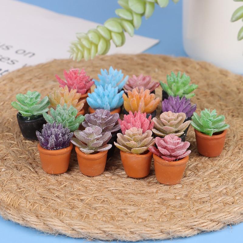 5pcs 1:12 Dollhouse Miniature Mini Potted Succulent Plant Model Accessor EW