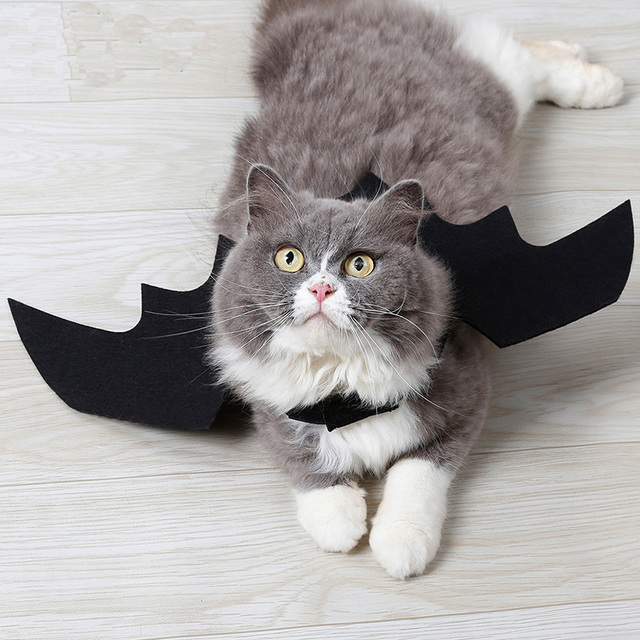 Halloween Pet Dog Costumes Bat Wings Vampire Black Cute Dress Cat Costume Pet Cosplay Clothing Cat Wings Halloween Costume 2
