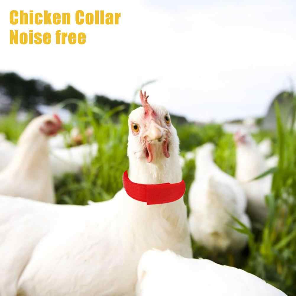 2 pieces ensemble collier de poulet anti crochet sans bruit collier collier fournitures pour poulet canards oies et autres volailles sur durable