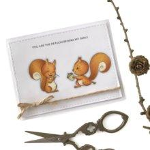 JCarter Clear Rubber Stamps Scrapbook Squirrel Slogan Craft Stamp Silicone Seals Stencil Album Card Make Sheet New 2019