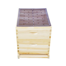 1 шт Пластик в виде пчелиных сот с устройство для сбора прополиса