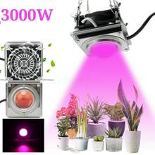 Goodland-Lámpara Phyto de espectro completo, luz LED para cultivo de plantas, Fitolamp para plantones de interior, caja de tienda para cultivo de flores, 220V