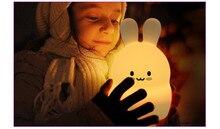 rabbit rgb led night…