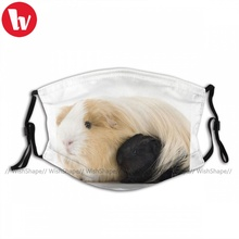 Fast Delivery Adjustable Guinea Pig Face Mask Fancy Polyester Adults Mouth Facial Mask With Filters