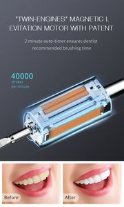 Image 3 - Seago Sonic Electric Toothbrush Upgraded Ultrasonic Automatic Tooth Brush USB Rechargeable Waterproof Replacement Heads Cleaning
