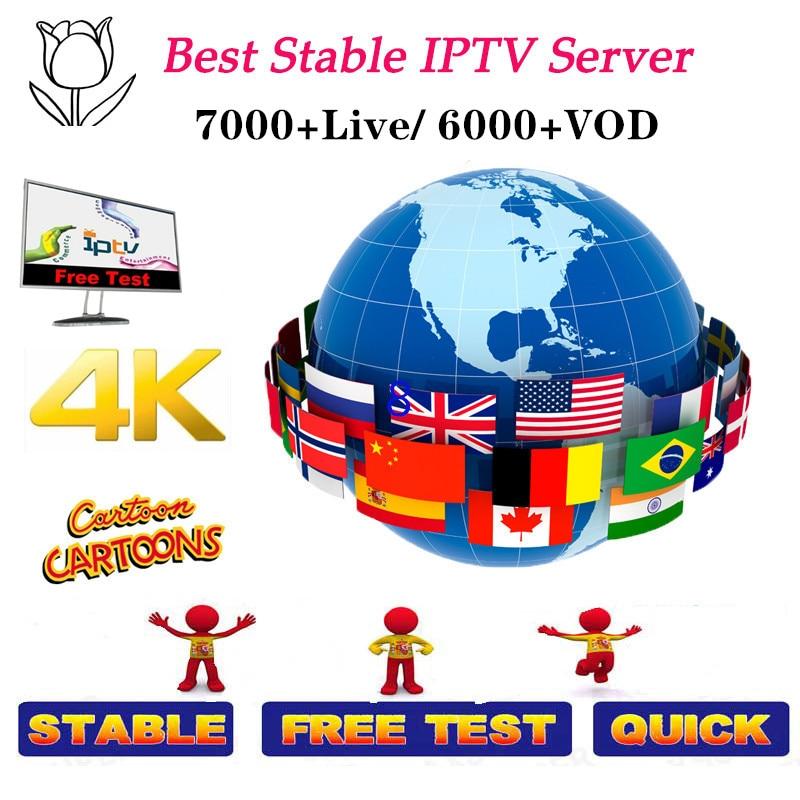 Best Sstable IPTV M3u Subscription Iptv Italy German French Poland Romani Subscription Android Box M3u Enigma2 Smart TV PC Linux