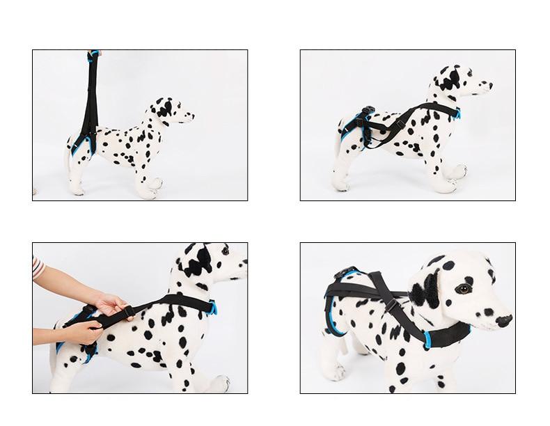 Dog Sling Lift Harness